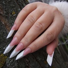 Edge Nails: perfect nail sculpture