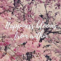 Happiness blooms from within. You won't find happiness in material things or in that next thing. You have to find it from yourself. Yoga's been the most amazing world to come into, learning about self love, mindful movement and mindfulness in meditation. Visit nano-yoga.com for more posts on yoga, yoga sequences for beginners, skiers and snowboarders. #inspirationalquote #quote #springquote #cherryblossom #japan #takadapark #sakura #positivevibes #happiness #selflove