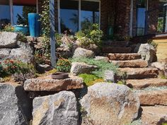 Growing plants amongst the rock wall is the perfect activity for now. Rock Wall, Growing Plants, The Rock, Beautiful Words, Firewood, Activities, Texture, World, Crafts