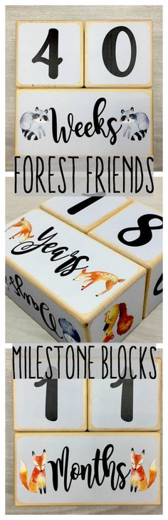 Forest friends milestone blocks #baby'sfirstyear #pregnancytracker #birthdays #diy