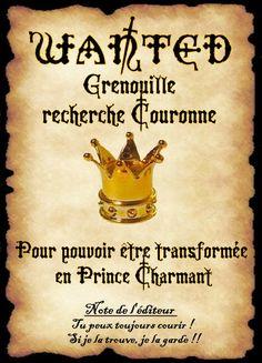 affiche prince charmant