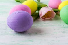 easter purple egg and pink tulip
