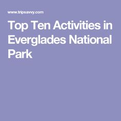 Top Ten Activities in Everglades National Park