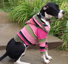 Dog's XXSmall Recycled Sweater Coat Made to by CraftedByAuntyEm, $30.00