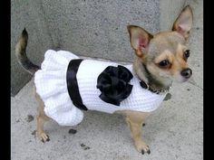 Abrigos de ganchillo para perros, paso a paso [FOTOS] - YouTube