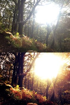 iPhoneography - before & after
