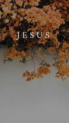 Make Rosa: Wallpapers Religiosos - Jesus Saves! - Make Rosa: Wallpapers Religiosos - Jesus Wallpaper, Bible Verse Wallpaper, Tumblr Wallpaper, Wallpaper Quotes, Trippy Wallpaper, Nature Wallpaper, Jesus Quotes, Faith Quotes, Bible Quotes