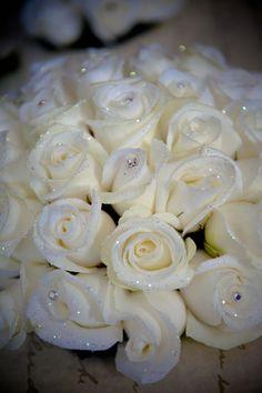 L'eleganza della rosa bianca