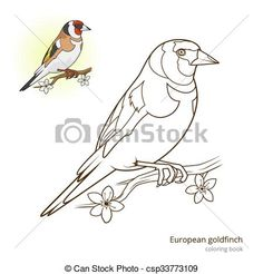 Cool Art Drawings, Bird Drawings, Disney Drawings, Hand Embroidery Patterns Flowers, Bird Patterns, Bird Coloring Pages, Coloring Books, Bird Line Drawing, Animal Stencil