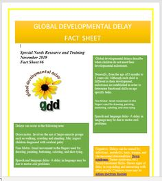 Global Development Delay Fact Sheet Global Developmental Delay, Developmental Delays, Types Of Disability, Special Needs Resources, Emotional Development, 5 Year Olds, Physics, Facts, Physique
