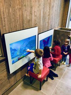 Wall Mount, Flat Screen, Tv, Flat Screen Display, Flatscreen, Tvs, Dish Display, Television Set, Television