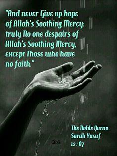 Quran, Surah Yusuf 12 : 87 Dedicated to Soni