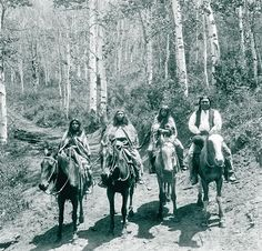 The Utes Found New Identity And Purpose From The Back Of The Spanish Horse. The Efficiency Of Hunting Via Horseback Allowed Scattered Families To Group Together In Larger Bands. Surrounded By Aspen Trees, Ute Captain Jinks Journeys On Horseback With These Women In Atchee, Colorado.