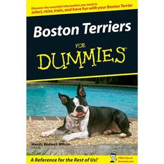 Boston Terriers for Dummies Book: Get the scoop on bringing a Boston Terrier home and raising him right.  $4.99  http://calendars.com/Boston-Terriers/Boston-Terriers-for-Dummies-Book/prod201300012192/?categoryId=cat10055=cat10055#