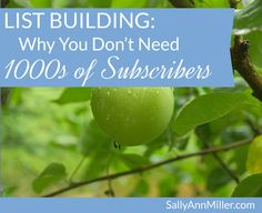 List Building: Why You Don't Need 1000s of Subscribers
