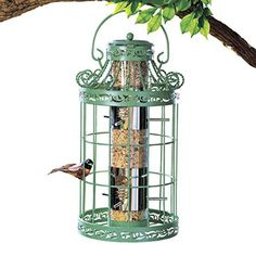 Collections Etc Springtime Hanging Bird Feeder, Vintage French Country-Inspired Green Design, 7 L x 7 W x 16 H, Green Metal Bird Feeders, Bird Seed Feeders, Bird Feeder Plans, Wild Bird Feeders, Hanging Bird Feeders, Bird Cages, Steel Cage, Wildlife Decor, Metal Birds