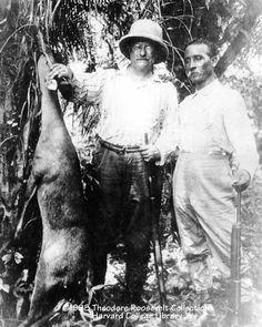 Rondon e Roosevelt.