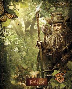 Radagast ❤•❦•:*´¨`*:•❦•❤ The Hobbit