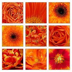 Afbeeldingsresultaat voor atelier inrichting met oranje