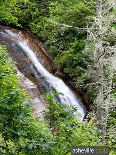 Hike the Bearwallow Falls Trail to a tumbling waterfall at Gorges State Park in Western NC