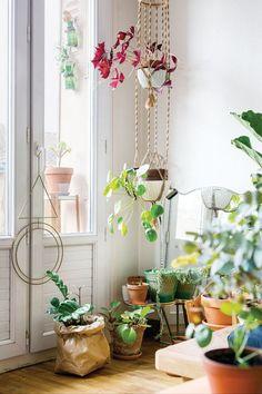 Resultado de imagen para room corner plants books