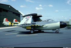 Chris Bolton (@CcibChris) | Twitter DeHavilland SEA VENOM Westland Whirlwind, Royal Navy, Venom, Military Aircraft, World War Two, Wwii, Fighter Jets, Sea, Planes