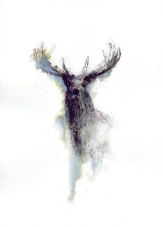 Red stag by Sean Briggs Jan 11, 2016 Wax on ink, Red deer stag from Woburn park. 787 © art, drawing, stag, sketch, http://etsy.me/1rARc0J