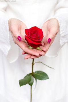 584 mejores imágenes de Rosas En Mano en 2020 | Rosas, Mujer con ...