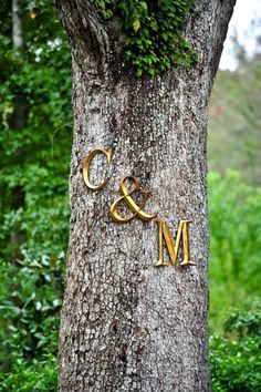 Hobby Lobby wall letters in the bride & groom's initials hung on a tree for an outdoor ceremony