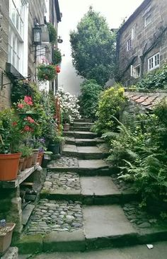 Cottage Whitby bay Spring Is Here, North Yorkshire, Stairways, Small Towns, Serenity, Beautiful Places, Destinations, Wanderlust, England