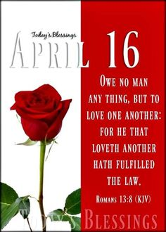 Love One Another, Romans, First Love, Blessed, Day, First Crush, Love Each Other, Puppy Love, Novels