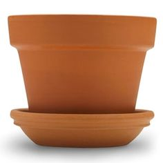 Use small flowerpot saucer as a place to store and collect drips from toliet plunger. Could paint to make it look less like a flowerpot saucer. // msn