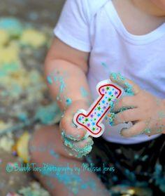 1st Birthday Smash Cake Photos