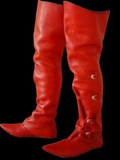 Gorgeous riding boots.
