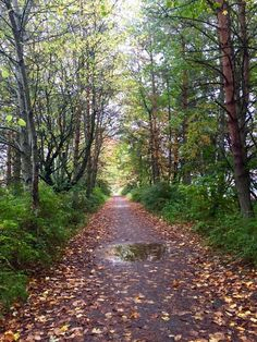 """The Scottish Highlands offer some of the best hiking--or """"walking"""" as they call it there. This was a particularly lovely trail that passed by the site of one of the oldest Highland Games in Scotland."""