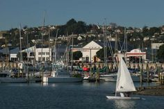 Victor Dees Travel World: Napier Beach, New Zealand - Hawkes Bay - Beach Town Resort