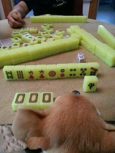 I am good at playing mahjong