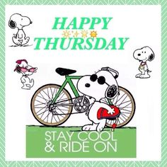 Happy Thursday, have a wonderful day. Happy Thursday Morning, Sunday Morning Coffee, Hug Quotes, Snoopy Quotes, Peanuts Quotes, Its Friday Quotes, Sunday Quotes, Friday Funnies, Thursday Quotes