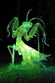 """Aiming Eyes,"" an ice sculpture of a praying mantis from the 2007 World Ice Art Championships in Fairbanks"