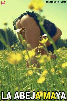 Libando flores: La abeja Maya - Libar es la acción de que un insecto chupe el néctar de las flores y de todos los insectos las abejas son las más profesionales. Y si, solo se aplica si chupa un insecto mal pensados … si es una persona no estaría bien dicho libar :-) Esa simple acción es fundamental para todo el ecosistema del planeta. El término polinización hace referencia al ... #beautifulwomen #miel #humor #belleza