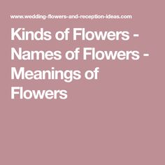 Kinds of Flowers - Names of Flowers - Meanings of Flowers