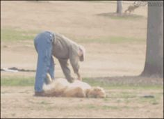 Trying to get my dog to leave the park like…