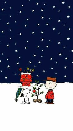 Snoopy winter wallpaper for iPhone 6 Snoopy winter wallpaper for iPhone 6 iphone snoopy wallpaper winter winterbucketlist winterclothes wintergirl winterhome winterinspiration winteriscoming winterpainting winterwallpapers – cakerecipespins. Cartoon Wallpaper, Wallpaper Para Iphone 6, Wallpaper Natal, Holiday Iphone Wallpaper, Cute Christmas Wallpaper, Snoopy Wallpaper, Apple Watch Wallpaper, Whatsapp Wallpaper, Holiday Wallpaper