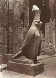 mideastcuts: Statue of Horus at Edfu, Lost Egypt Photographic Catalog, The Oriental Institute, University of Chicago