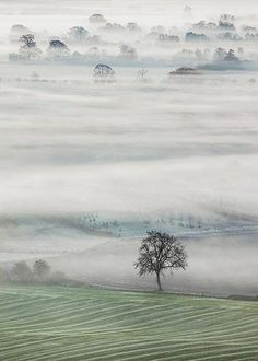 John Hoddinott - Vale of mist, Clench, Vale of Pewsey, Wiltshire, England / Landscape Photographer of the Year 2013 winners Beautiful Landscape Photography, Scenery Photography, Beautiful Landscapes, Photography Tips, Night Photography, Landscape Pictures, Landscape Art, Foto Art, Landscape Photographers