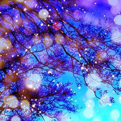 Good Night- @snoworion- #webstagram