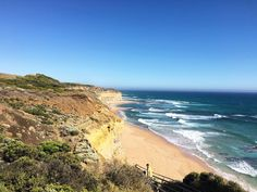 #lornebeach #lorne #apollobay #apollo #beach #sand #morningtea #australia #wildlife #wild #colours #mellife #Melbourne #Melbournelife #geelong  #anglesea #torquay #sun #summer #sunshine #greatoceanrd #greatoceanroad  #12apostles  #gowest #gibsonsteps #nature #love #lifeliver #lifestyle #blue #colours by jadeetse http://ift.tt/1ijk11S