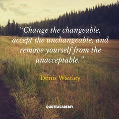 Change the changeable, accept the unchangeable, and remove yourself from the unacceptable. Denis Waitley  https://quoteacademy.websake.net/