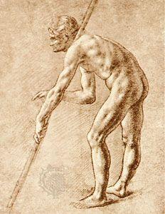 Study Of Nude Men Drawing By Leonardo Da Vinci