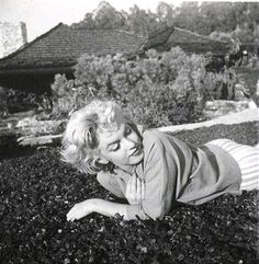 Marilyn Monroe at Palm Springs, Photo by Ted Baron. Marilyn Monroe, Marlene Dietrich, Brigitte Bardot, Greta, Star Beauty, Light Of My Life, Norma Jeane, Iconic Women, Rare Photos